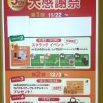 2014-11-21-16-37-54_deco.jpg